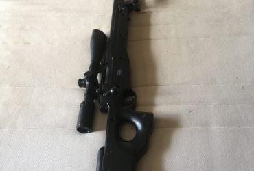 Mauser aw308